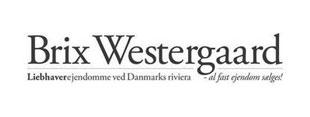 Brix Westergaard Hornbæk